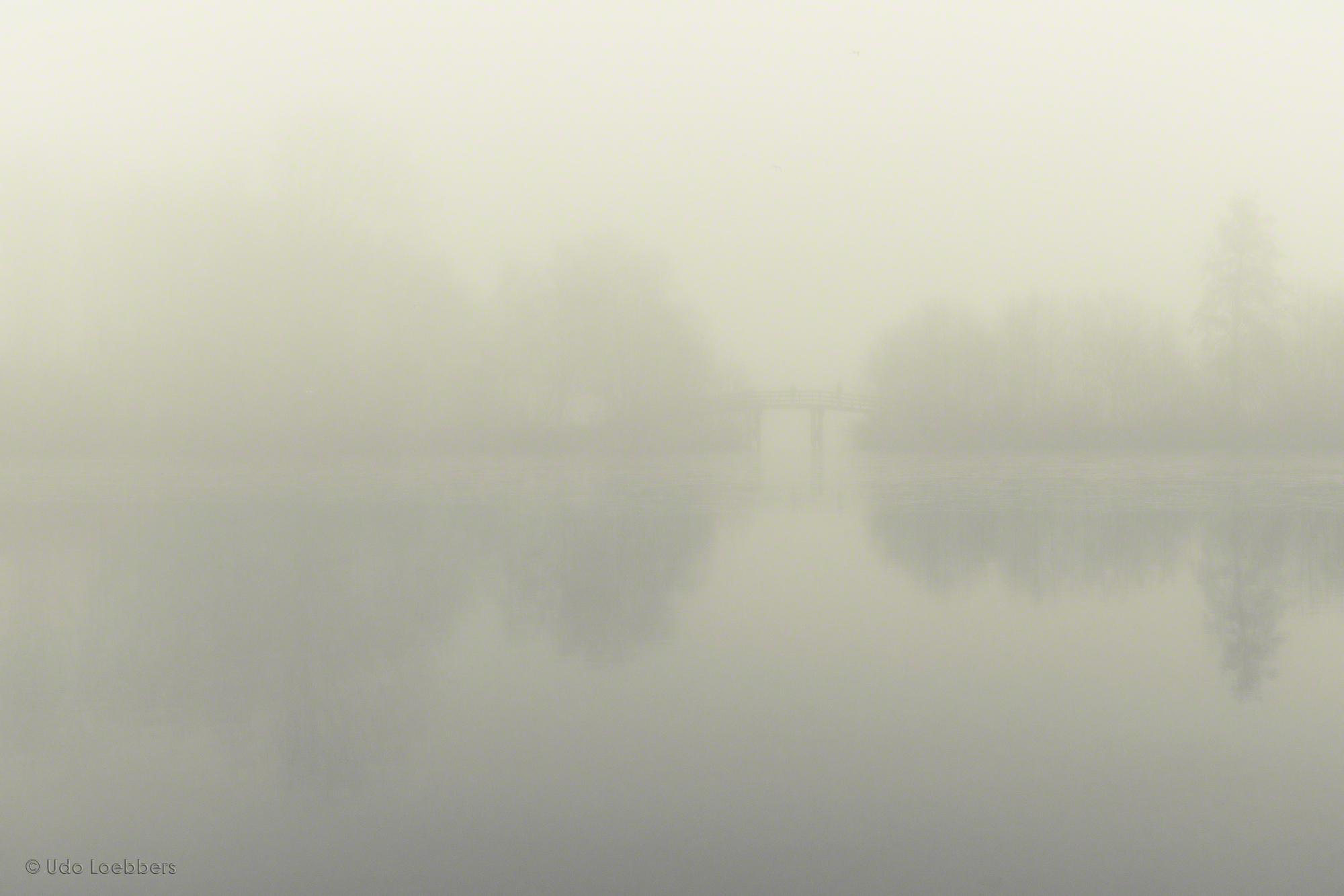 Nebel IV