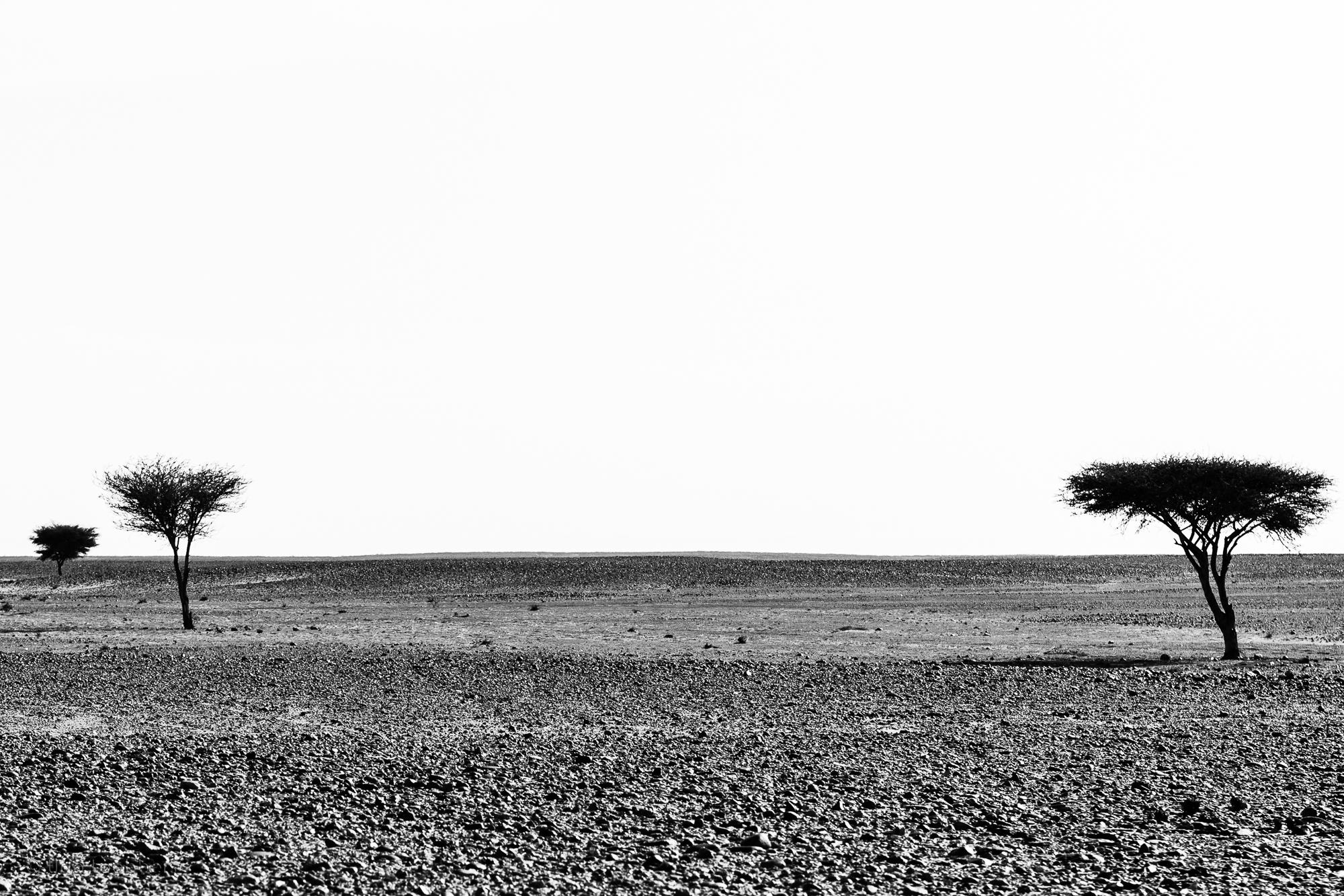 Steinwüste auf dem Weg zur Erg Chegaga, Marokko